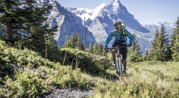 Мартин Найдеггер: «Швейцарский туризм находится на переломном этапе»